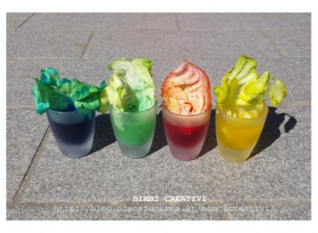Esperimento per bambini: Come bevono le piante?