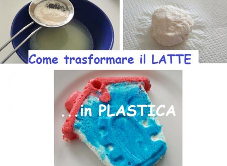 Come trasformare il LATTE in …PLASTICA