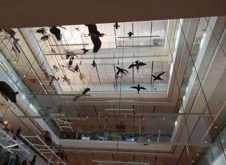 GITA AL MUSE – IL MUSEO DELLE SCIENZE DI TRENTO