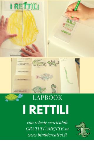 Lapbook: i rettili