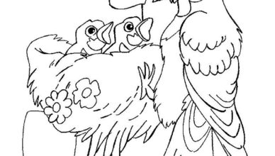 bimbi-creativi-uccellini-nel-nido