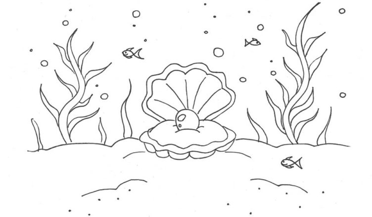 bimbi-creativi-disegno-conchiglia