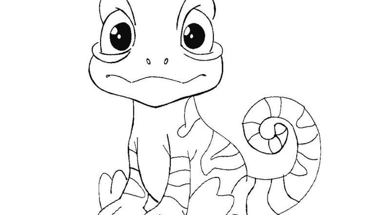 bimbi-creativi-disegno-camaleonte-da-colorare