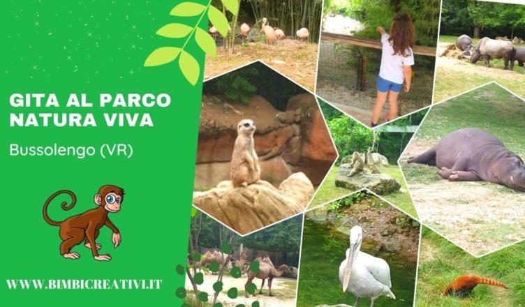 bimbi-creativi-gita-parco-natura-viva